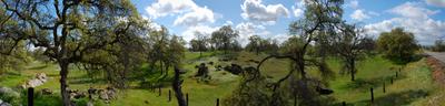 Oakhurst  Farm