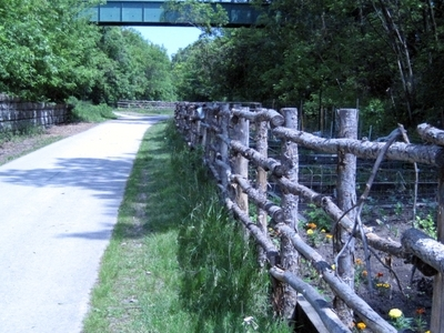 Oak Leaf Trail On East Side