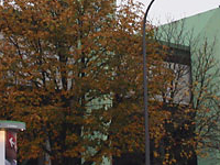 Grünwalder Estádio