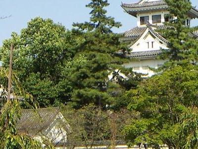 Ogaki Castle