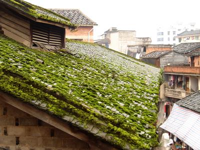 Old  Houses  Jiaocheng  District  Ningde