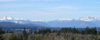 Panorama Of Olympic Mountains In Winter