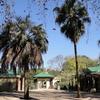 KwaZulu-Natal Jardín Botánico Nacional