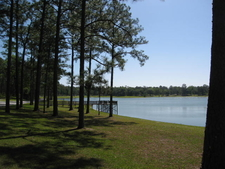 Open Pond Recreation Area In Conecuh National Forest