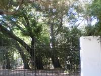 Rancho Orcutt Horticultura Center