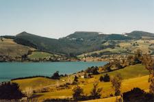View Across Blueskin Bay