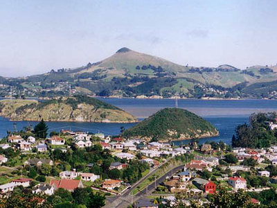Looking Across Port Chalmers And The Otago Harbour