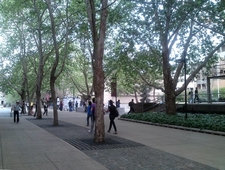 Outside Library