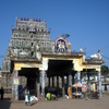 Padalesearar Temple Cuddalore