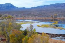 Pahranagat Wildlife Refuge Landscape - Nevada