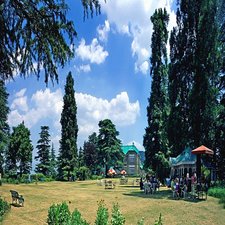 Palace In Chail