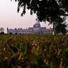 Palace Lawn