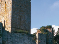 Palacio-fortaleza de los Condes de Andrade