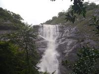 Aryankavu