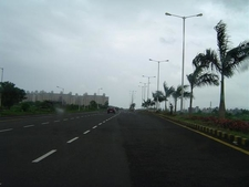 Palm Beach Marg