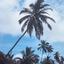 Ilhas Cocos