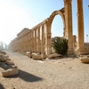 Palmyra Ancient Avenue