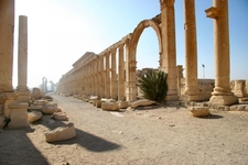 Palmyra Ancient Avenue