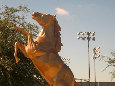 Palomino Statue At  Laredo  Community  College