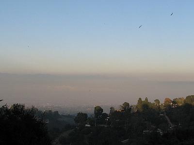 Palos Hills