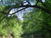 Pamunkey River