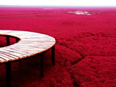 Panjin Red Beach In China