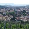 Montevarchi Town