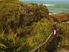 Paparoa @ Punakaiki - West Coast - South Island NZ