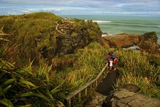 Paparoa @ Punakaiki - West Coast - South Island NZ
