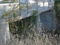 Papillion Creek