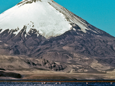 Parinacota And Chungará Lake