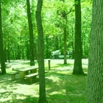 Paris Landing State Park Campground