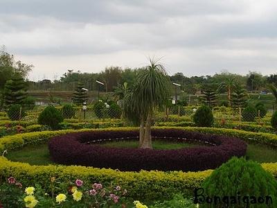 Park At Bongaigaon
