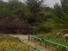 Park By Krępica River
