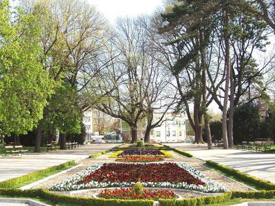 Dobrich Park Entrance