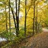 Park Sharon Woods - Southwestern Ohio