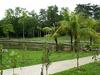 Park Taman Lembah Kiara - Bukit Kiara