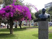 Parque John F Kennedy
