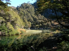 Huerquehue National Park