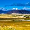Paryang Wetlands - Tibet
