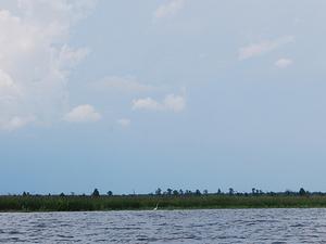 Río Pascagoula