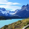 Patagonia - Wooden Steps For Hikers