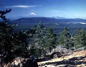 Payne Springs Campground