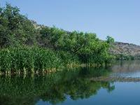 Pena Blanca Lake
