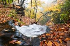 Pennsylvania Ricketts Glen State Park Waterfall Trail