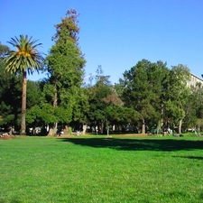 People's Park, Berkeley