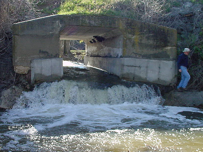 Perched Culvert Fish Barrier At Carbon County, Montana