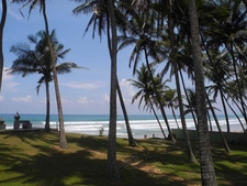 Perfect Beach Sri Lanka