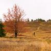 Peter's Trail 105 - Tonto National Forest - Arizona - USA