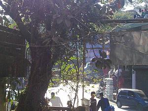 Phawngpui - Base Lunglei Cidade